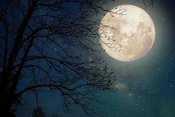 mitos de la luna y el conejo